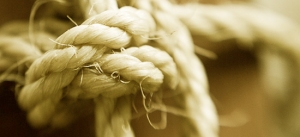The knots of attachment.